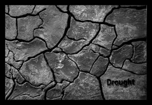 Drought.  Image Source: Filippo Diotalevi, Flickr, Creative Commons