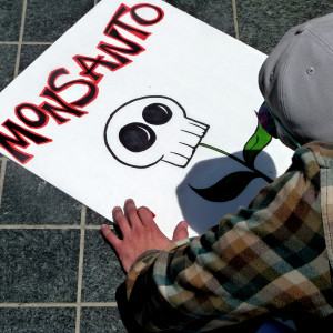 Monsanto Image Source: Donna Cleveland