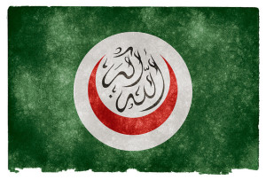 Organization of Islamic Cooperation flag Image Source: Nicolas Raymond, Flickr, Creative Commons