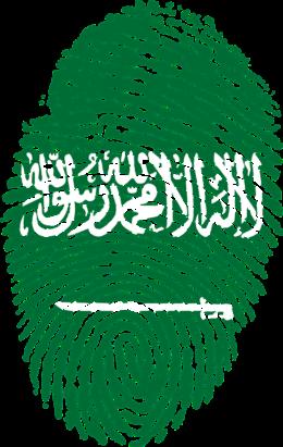 saudi-arabia-653087_1280