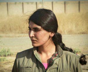 By Kurdishstruggle - https://www.flickr.com/photos/kurdishstruggle/24409861280, CC BY 2.0, via Wikimedia Commons